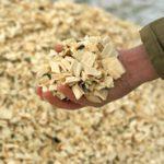 Woody Biomass Fuels