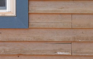 5-year old cedar siding