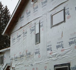 Poor installation and mold on house wrap.