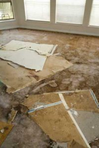 Water can cause a lot of damage to your home. Mold will make that damage even worse.